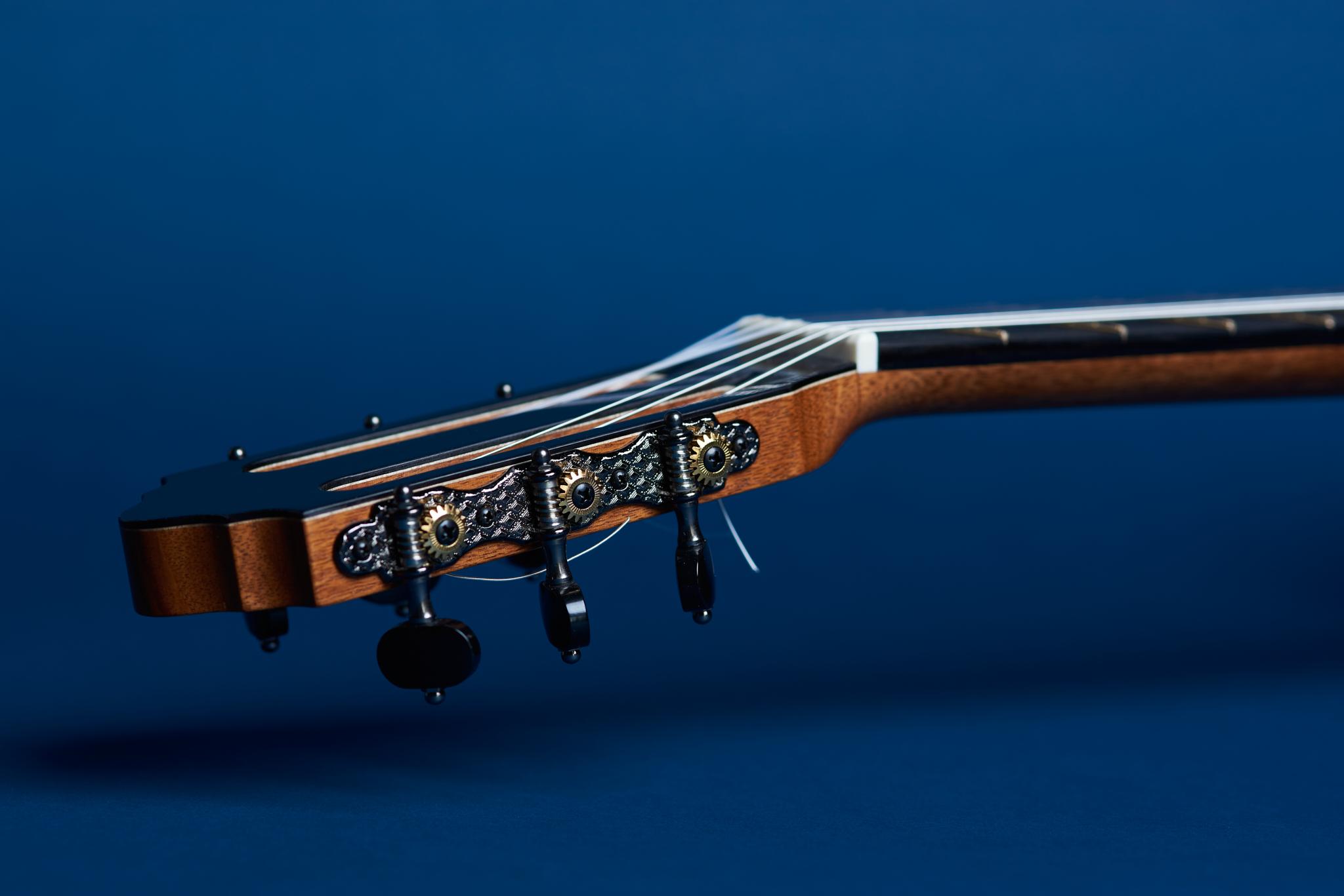 Von Dizon Guitar30647 1