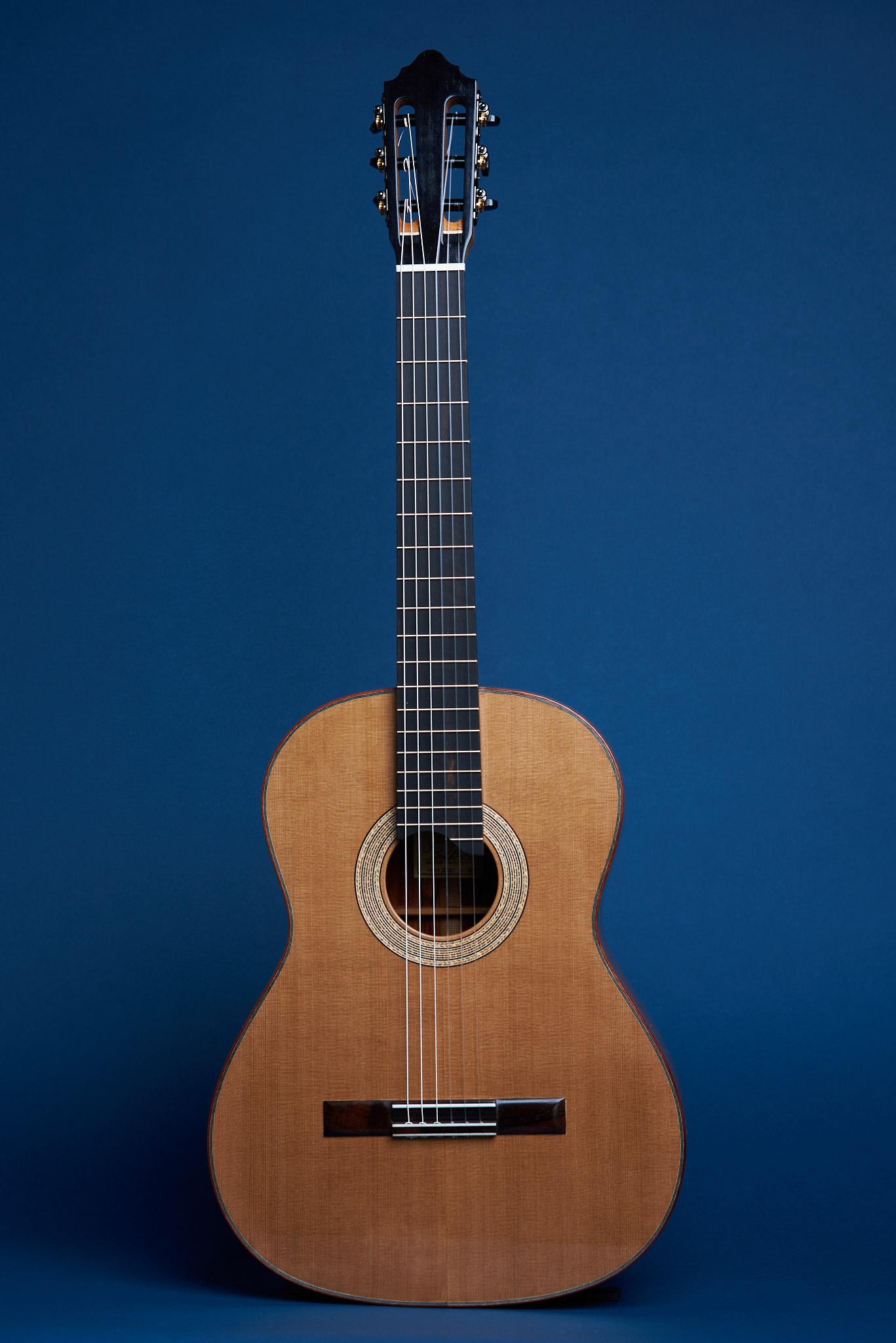 Von Dizon Guitar30655