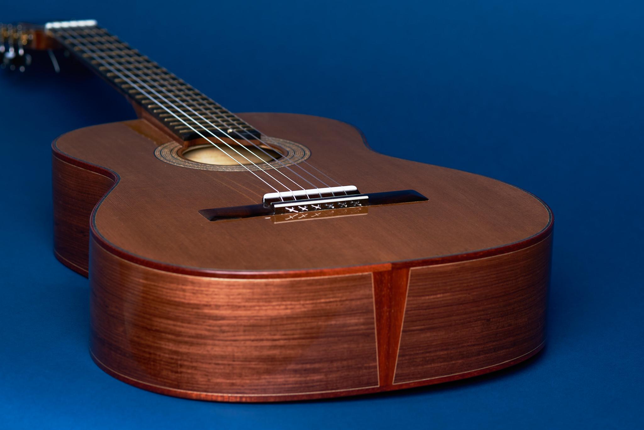 Von Dizon Guitar30659