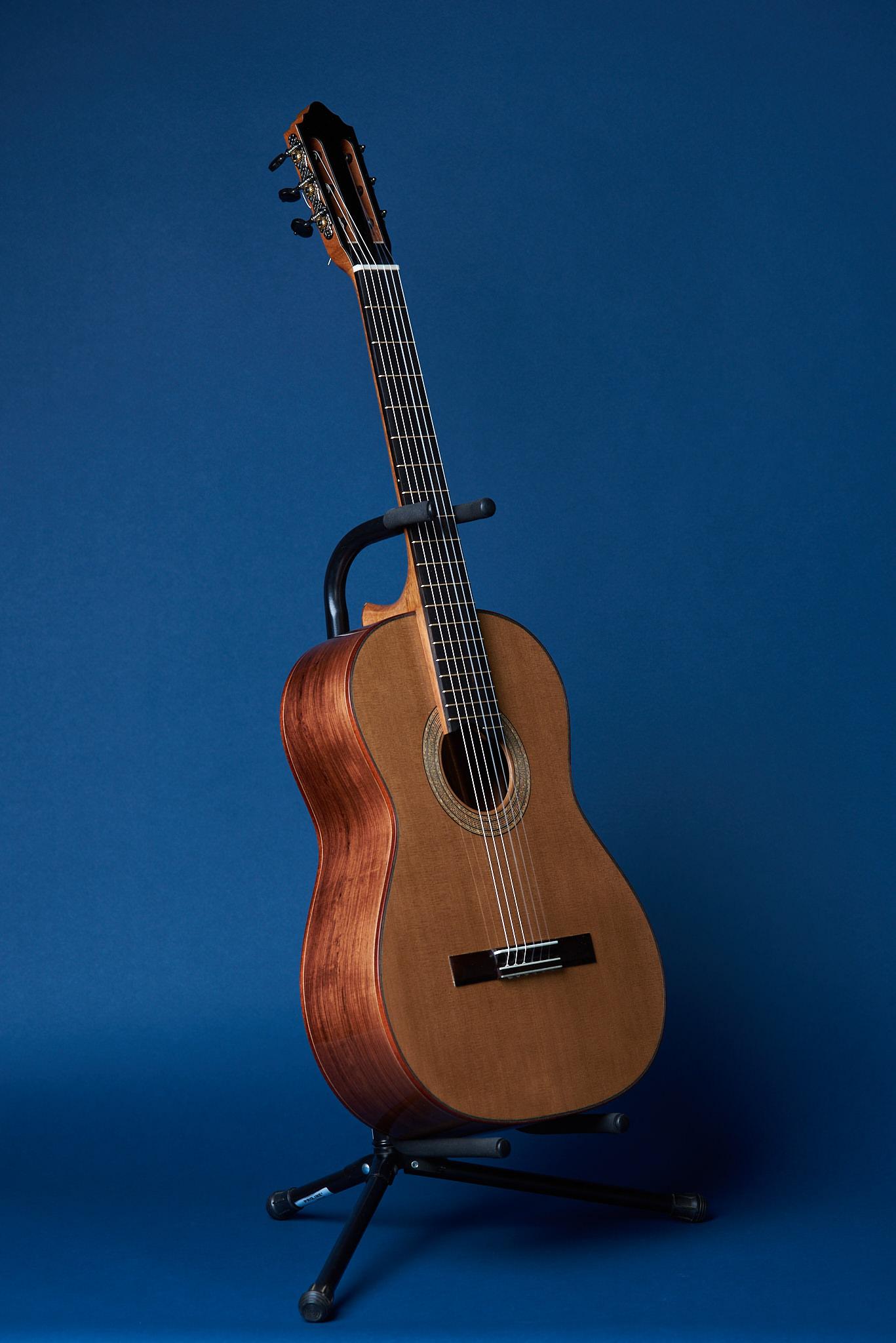 Von Dizon Guitar30672